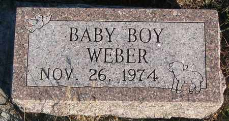 WEBER, BABY BOY - Cuming County, Nebraska | BABY BOY WEBER - Nebraska Gravestone Photos