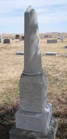 WILSON, E. IONE - Cuming County, Nebraska | E. IONE WILSON - Nebraska Gravestone Photos