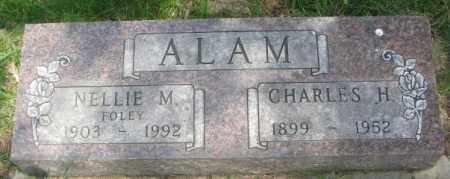 FOLEY ALAM, NELLIE M - Dakota County, Nebraska | NELLIE M FOLEY ALAM - Nebraska Gravestone Photos