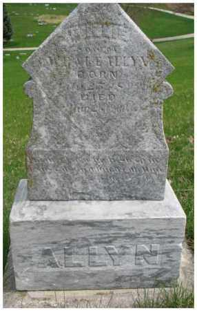 ALLYN, WILLIE - Dakota County, Nebraska | WILLIE ALLYN - Nebraska Gravestone Photos