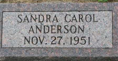 ANDERSON, SANDRA CAROL - Dakota County, Nebraska   SANDRA CAROL ANDERSON - Nebraska Gravestone Photos