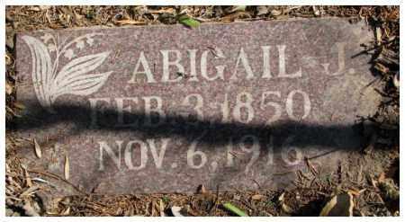 BARNES, ABIGAIL J. - Dakota County, Nebraska | ABIGAIL J. BARNES - Nebraska Gravestone Photos