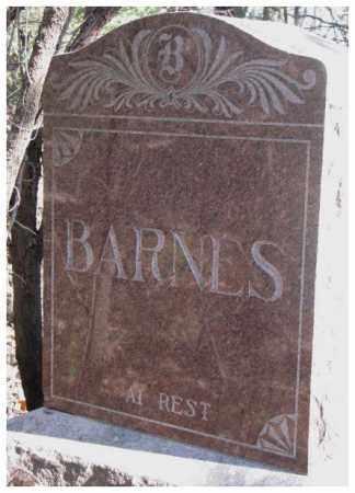 BARNES, PLOT - Dakota County, Nebraska | PLOT BARNES - Nebraska Gravestone Photos