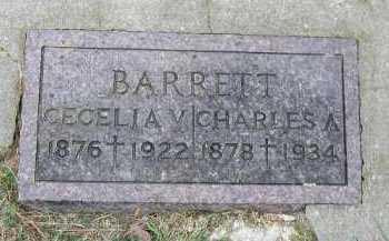 BARRETT, CECELIA V. - Dakota County, Nebraska | CECELIA V. BARRETT - Nebraska Gravestone Photos