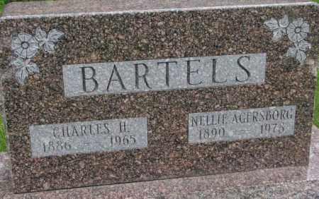 AGERSBORG BARTELS, NELLIE - Dakota County, Nebraska | NELLIE AGERSBORG BARTELS - Nebraska Gravestone Photos