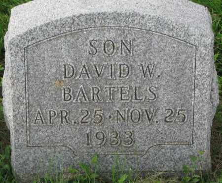 BARTELS, DAVID W. - Dakota County, Nebraska | DAVID W. BARTELS - Nebraska Gravestone Photos