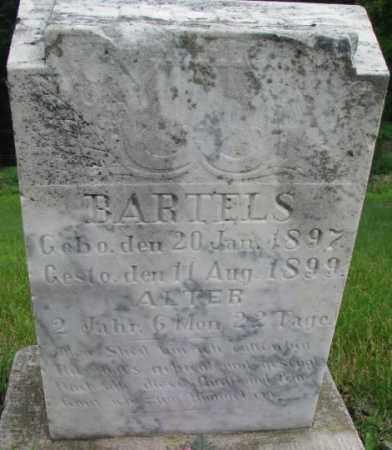 BARTELS, OTTO - Dakota County, Nebraska | OTTO BARTELS - Nebraska Gravestone Photos