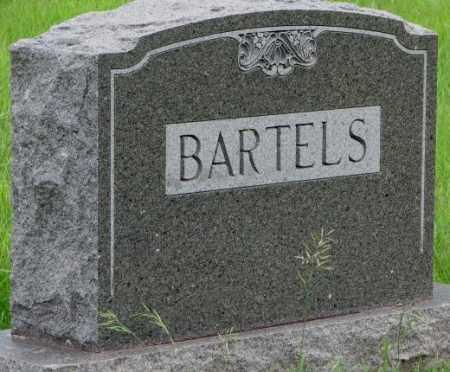 BARTELS, PLOT - Dakota County, Nebraska | PLOT BARTELS - Nebraska Gravestone Photos