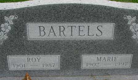 BARTELS, MARIE - Dakota County, Nebraska | MARIE BARTELS - Nebraska Gravestone Photos
