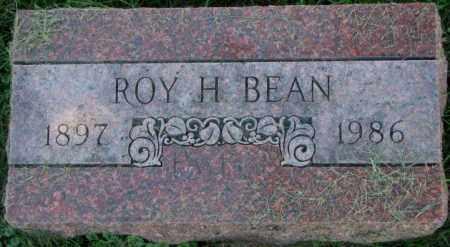 BEAN, ROY H. - Dakota County, Nebraska | ROY H. BEAN - Nebraska Gravestone Photos