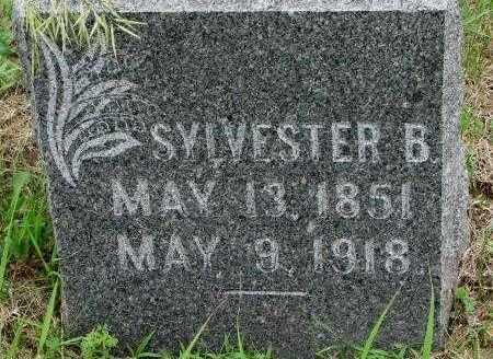 POLLY, SYLVESTER B. - Dakota County, Nebraska | SYLVESTER B. POLLY - Nebraska Gravestone Photos