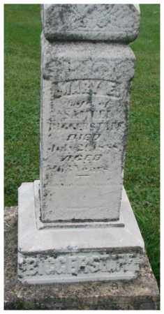 BIGGERSTAFF, MARY E. - Dakota County, Nebraska | MARY E. BIGGERSTAFF - Nebraska Gravestone Photos