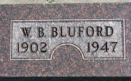 BLUFORD, W.B. - Dakota County, Nebraska | W.B. BLUFORD - Nebraska Gravestone Photos
