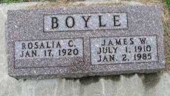 BOYLE, JAMES W. - Dakota County, Nebraska | JAMES W. BOYLE - Nebraska Gravestone Photos