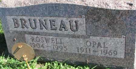 BRUNEAU, ROSWELL - Dakota County, Nebraska | ROSWELL BRUNEAU - Nebraska Gravestone Photos