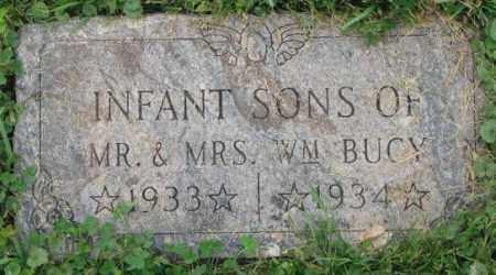 BUCY, INFANT SONS - Dakota County, Nebraska | INFANT SONS BUCY - Nebraska Gravestone Photos