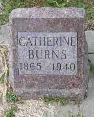 BURNS, CATHERINE - Dakota County, Nebraska | CATHERINE BURNS - Nebraska Gravestone Photos