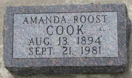COOK, AMANDA - Dakota County, Nebraska | AMANDA COOK - Nebraska Gravestone Photos