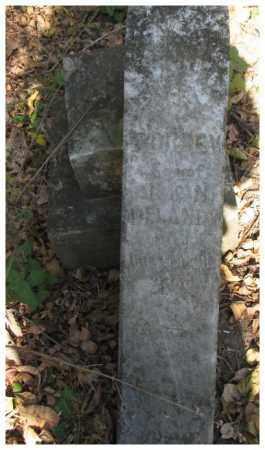 DELANEY, DORSEY - Dakota County, Nebraska   DORSEY DELANEY - Nebraska Gravestone Photos
