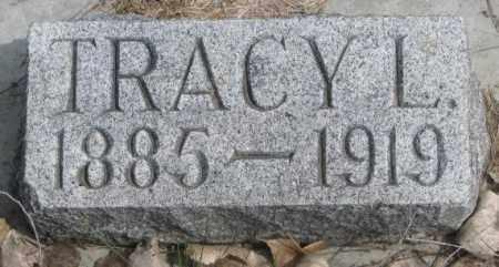 DILLARD, TRACY L. - Dakota County, Nebraska | TRACY L. DILLARD - Nebraska Gravestone Photos