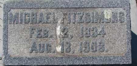 FITZSIMONS, MICHAEL - Dakota County, Nebraska   MICHAEL FITZSIMONS - Nebraska Gravestone Photos