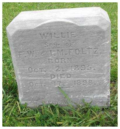 FOLTZ, WILLIE - Dakota County, Nebraska   WILLIE FOLTZ - Nebraska Gravestone Photos
