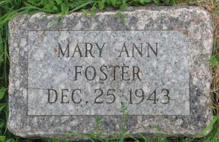 FOSTER, MARY ANN - Dakota County, Nebraska | MARY ANN FOSTER - Nebraska Gravestone Photos
