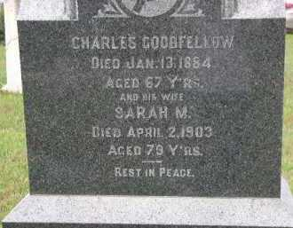 GOODFELLOW, SARAH M. - Dakota County, Nebraska | SARAH M. GOODFELLOW - Nebraska Gravestone Photos