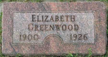 GREENWOOD, ELIZABETH - Dakota County, Nebraska | ELIZABETH GREENWOOD - Nebraska Gravestone Photos