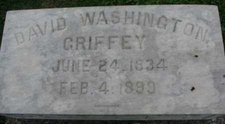 GRIFFEY, DAVID WASHINGTON - Dakota County, Nebraska | DAVID WASHINGTON GRIFFEY - Nebraska Gravestone Photos