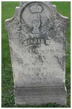 HAMMOND, ELIJA B. - Dakota County, Nebraska | ELIJA B. HAMMOND - Nebraska Gravestone Photos