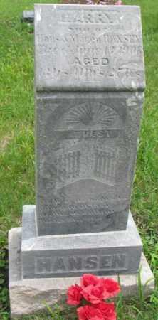HANSEN, HARRY - Dakota County, Nebraska   HARRY HANSEN - Nebraska Gravestone Photos