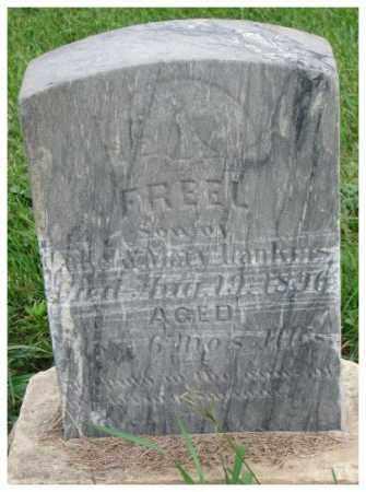HARKINS, FREEL - Dakota County, Nebraska | FREEL HARKINS - Nebraska Gravestone Photos