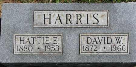 HARRIS, DAVID W. - Dakota County, Nebraska | DAVID W. HARRIS - Nebraska Gravestone Photos