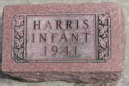 HARRIS, INFANT - Dakota County, Nebraska | INFANT HARRIS - Nebraska Gravestone Photos