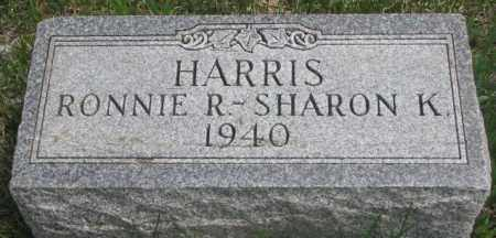 HARRIS, RONNIE R. - Dakota County, Nebraska | RONNIE R. HARRIS - Nebraska Gravestone Photos