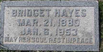 HAYES, BRIDGET - Dakota County, Nebraska | BRIDGET HAYES - Nebraska Gravestone Photos