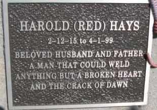 "HAYS, HAROLD ""RED"" - Dakota County, Nebraska | HAROLD ""RED"" HAYS - Nebraska Gravestone Photos"