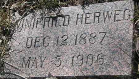 HERWEG, WINIFRIED - Dakota County, Nebraska | WINIFRIED HERWEG - Nebraska Gravestone Photos