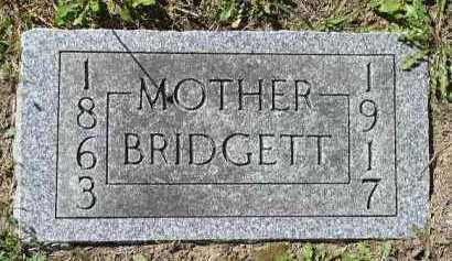 HODGINS, BRIDGETT - Dakota County, Nebraska | BRIDGETT HODGINS - Nebraska Gravestone Photos