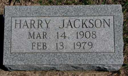 JACKSON, HARRY - Dakota County, Nebraska | HARRY JACKSON - Nebraska Gravestone Photos