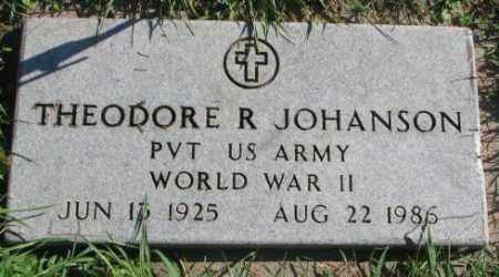 JOHANSON, THEODORE E. - Dakota County, Nebraska   THEODORE E. JOHANSON - Nebraska Gravestone Photos