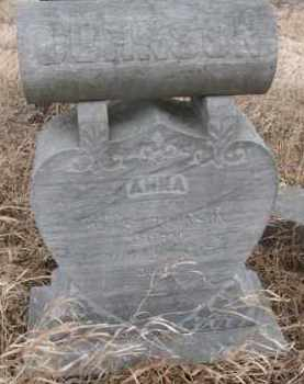 JOHNSON, ANNA - Dakota County, Nebraska | ANNA JOHNSON - Nebraska Gravestone Photos