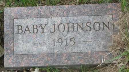 JOHNSON, BABY - Dakota County, Nebraska | BABY JOHNSON - Nebraska Gravestone Photos