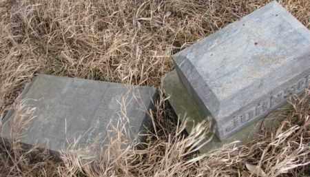 JOHNSON, NELS - Dakota County, Nebraska | NELS JOHNSON - Nebraska Gravestone Photos