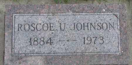 JOHNSON, ROSCOE U. - Dakota County, Nebraska | ROSCOE U. JOHNSON - Nebraska Gravestone Photos