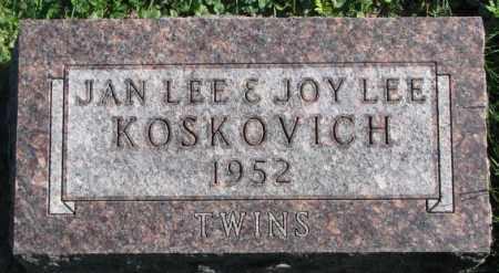 KOSKOVICH, JOY LEE - Dakota County, Nebraska | JOY LEE KOSKOVICH - Nebraska Gravestone Photos