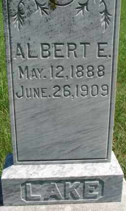 LAKE, ALBERT E. - Dakota County, Nebraska   ALBERT E. LAKE - Nebraska Gravestone Photos