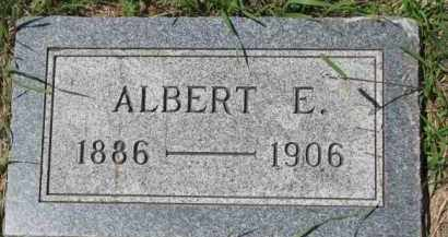 LARSEN, ALBERT E. - Dakota County, Nebraska | ALBERT E. LARSEN - Nebraska Gravestone Photos