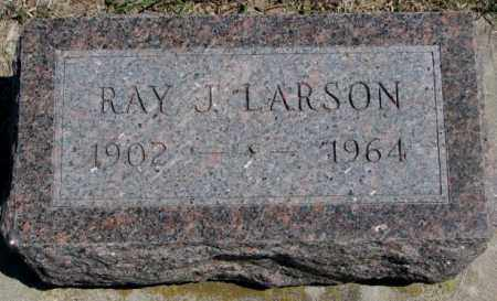 LARSON, RAY J. - Dakota County, Nebraska | RAY J. LARSON - Nebraska Gravestone Photos